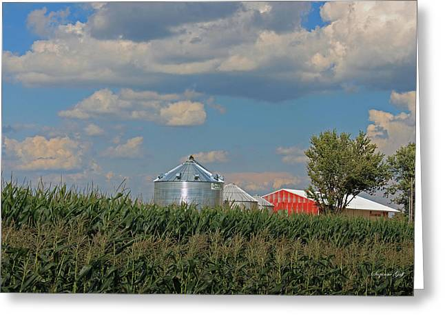 Rural Indiana Photographs Greeting Cards - Rural Indiana Scene - Adams County Greeting Card by Suzanne Gaff