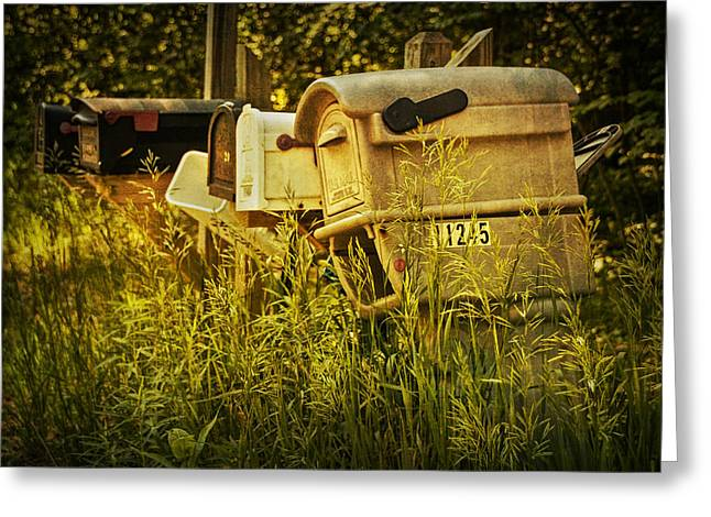 Postal Greeting Cards - Rural Mail Boxes No.038 Greeting Card by Randall Nyhof