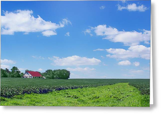 Red Roofed Barn Greeting Cards - Rural Midwest - Summer Greeting Card by Nikolyn McDonald
