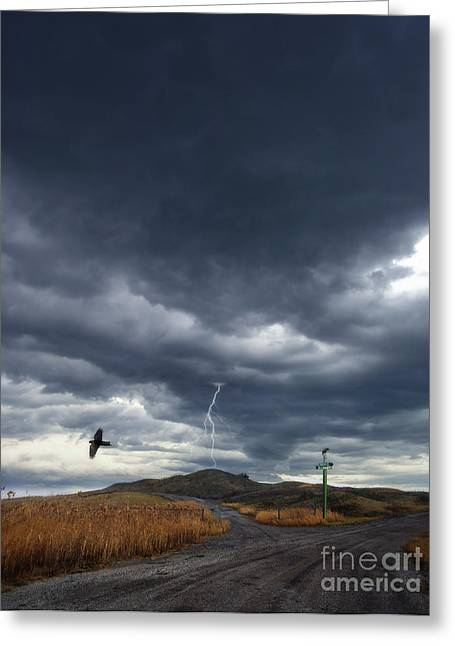 Gravel Road Greeting Cards - Rural Road in Lightning Storm Greeting Card by Jill Battaglia