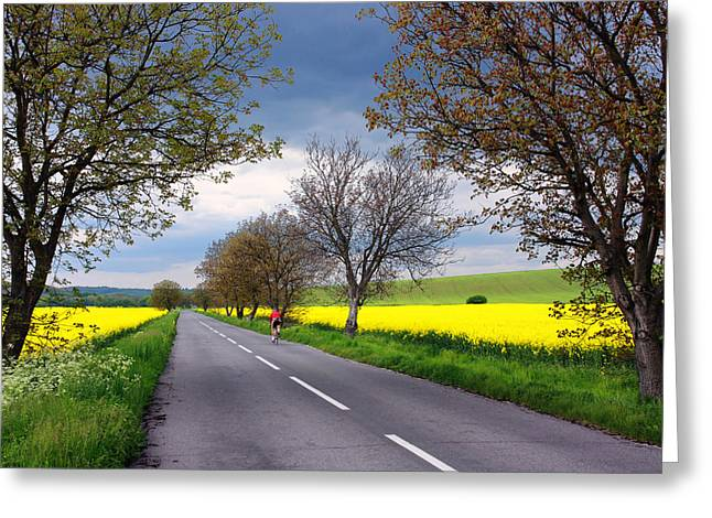 Alex Sukonkin Greeting Cards - Rural road with cyclist Greeting Card by Alex Sukonkin