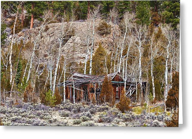 Mountain Cabin Greeting Cards - Rural Rustic Rundown Rocky Mountain Cabin Greeting Card by James BO  Insogna