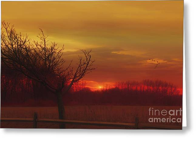 Sundown Framed Prints Greeting Cards - Rural Sunset Greeting Card by Tomas Images