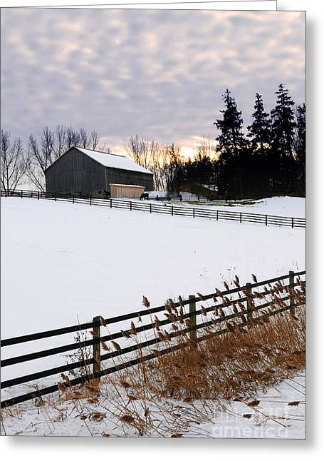 White Photographs Greeting Cards - Rural winter landscape Greeting Card by Elena Elisseeva