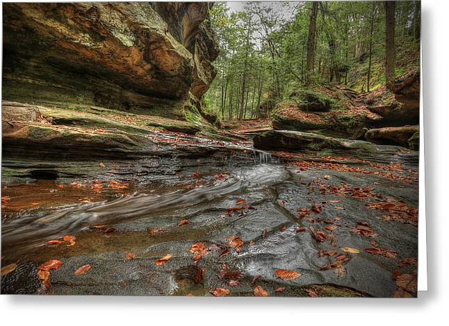 Fall Trees With Stream. Greeting Cards - Rush to Old Mans Cave Greeting Card by Jaki Miller