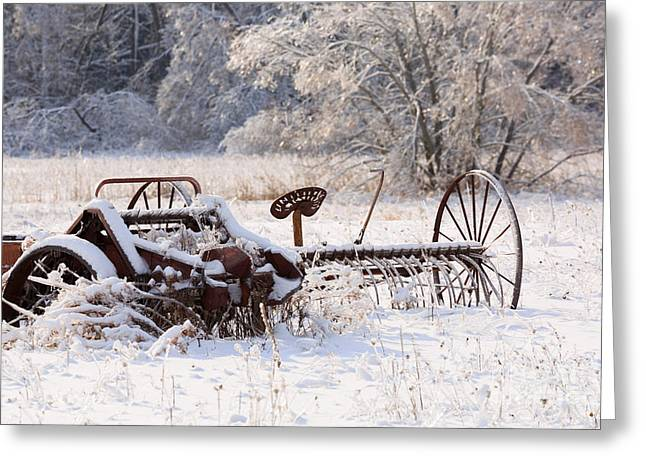 Harrow Greeting Cards - Rust and Snow Greeting Card by Louise Heusinkveld