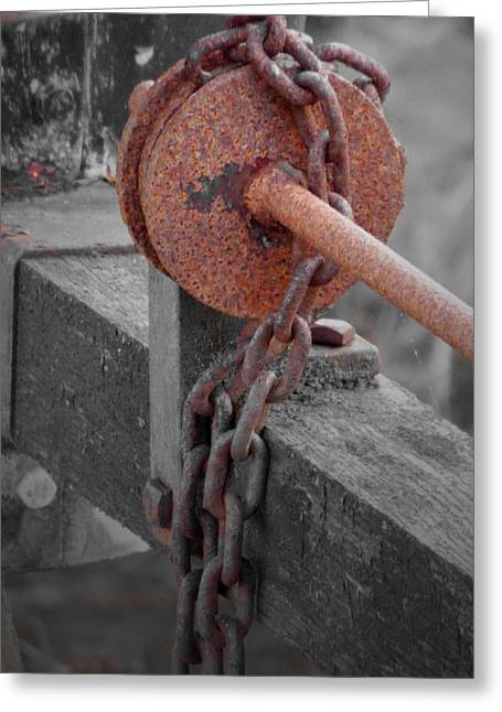 Rust And Wood Greeting Card by Brainwave Pictures