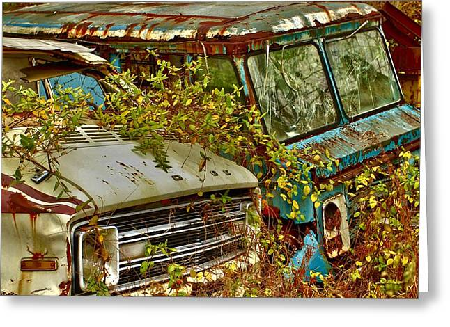 Neil Young Photographs Greeting Cards - Rust In Peace Greeting Card by William Rockwell