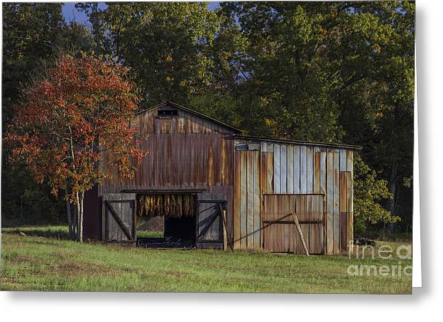 Western Ky Greeting Cards - Rust is Beautiful Greeting Card by Amber Kresge