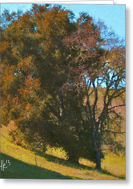 Big Sur Beach Greeting Cards - Rust Oak Greeting Card by Jim Pavelle