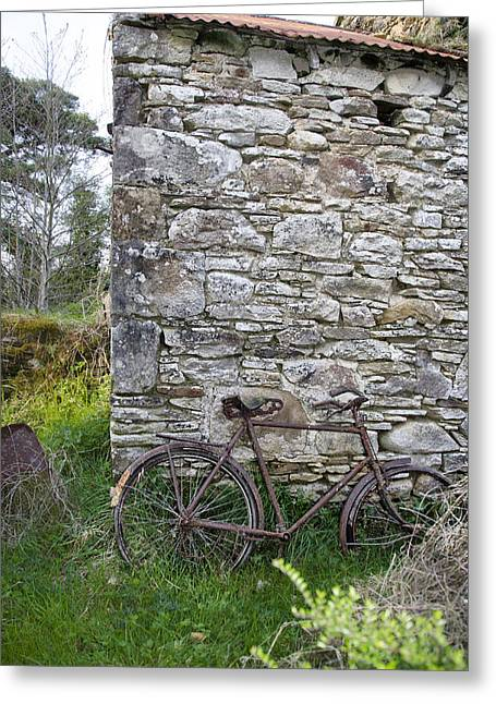 Sligo Greeting Cards - Rusted Bike in Rural Ireland Greeting Card by Bill Cannon
