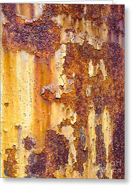 Steven Ralser Greeting Cards - Rusted Pole Greeting Card by Steven Ralser