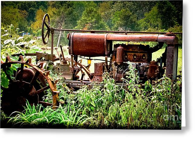Overgrown Greeting Cards - Rusted Red Tractor Greeting Card by Colleen Kammerer