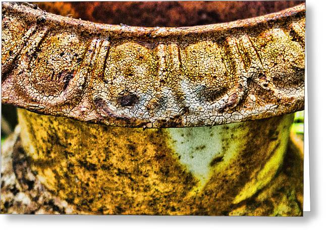 Pottery Pitcher Greeting Cards - Rusted Urn Detail Greeting Card by Bellesouth Studio