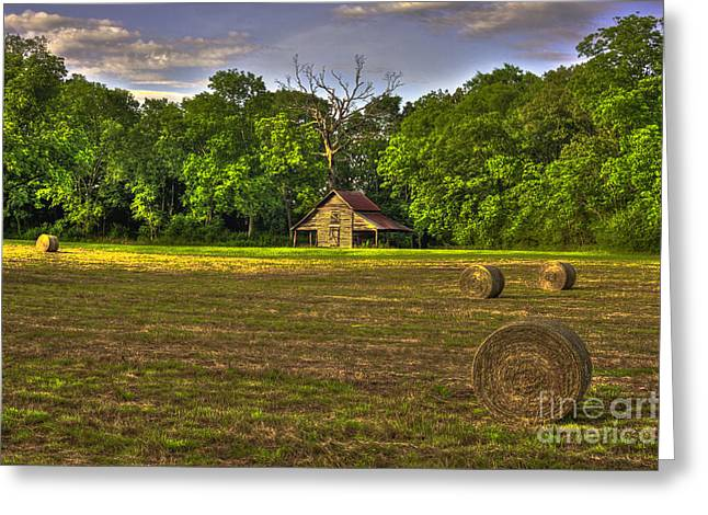 Hay Bales Greeting Cards - Rustic Beauty Oak Tree Round Bales Greeting Card by Reid Callaway