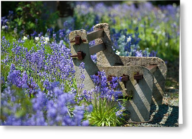 Hyacinth Greeting Cards - Rustic Bench Greeting Card by Amanda And Christopher Elwell