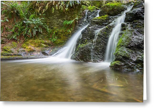 Camp Mystic Greeting Cards - Rustic Falls - Moran State Park Greeting Card by Steve Lagreca