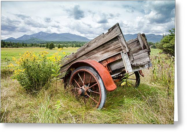 Rustic Landscapes - Wagon and wildflowers Greeting Card by Gary Heller