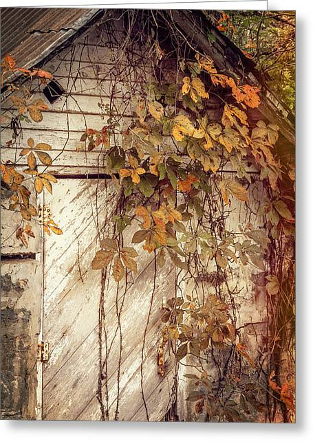 Sheds Greeting Cards - Rustic Ozark Fall Greeting Card by Steven Bateson