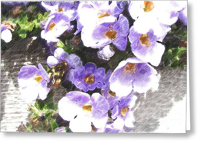 Hallmark Digital Art Greeting Cards - Rustic Planter Box Greeting Card by Beverly Guilliams