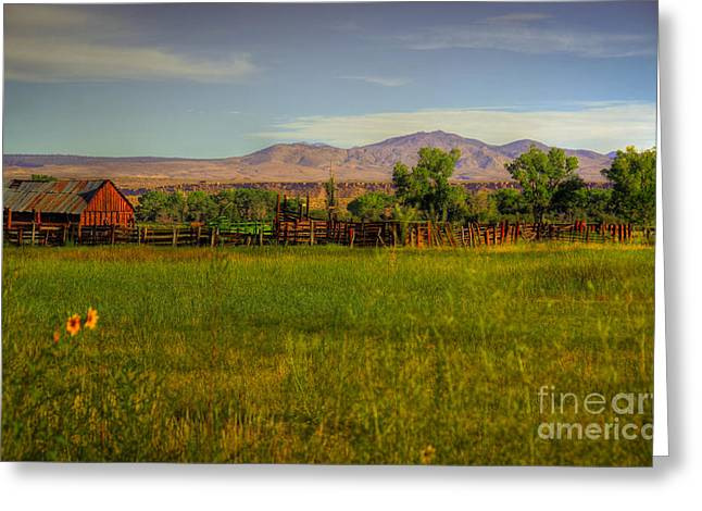 Barn Landscape Photographs Greeting Cards - Rustic Ranch Greeting Card by Kelly Wade