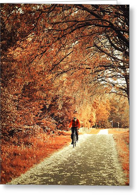 Peaceful Scene Greeting Cards - Rusty Autumn. Holland Greeting Card by Jenny Rainbow