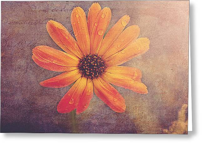 Rusty Greeting Card by Faith Simbeck