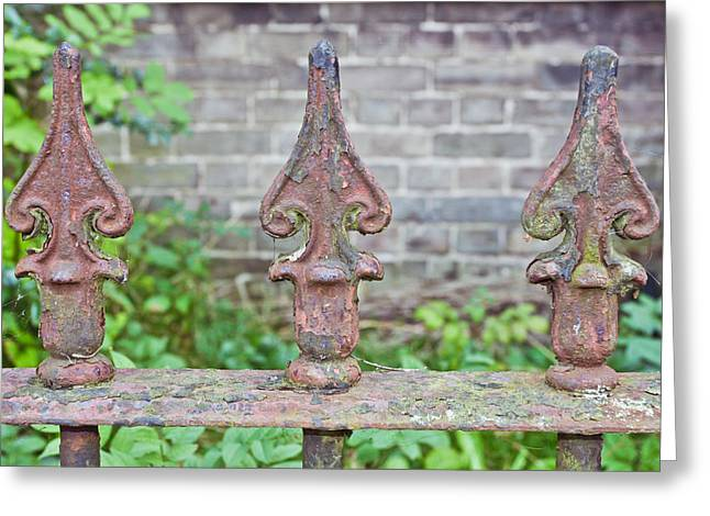 Rusty Fence Spikes Greeting Card by Tom Gowanlock