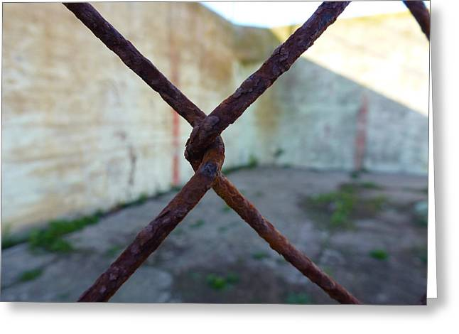 Linked Pyrography Greeting Cards - Rusty Fence X Greeting Card by Fabien White