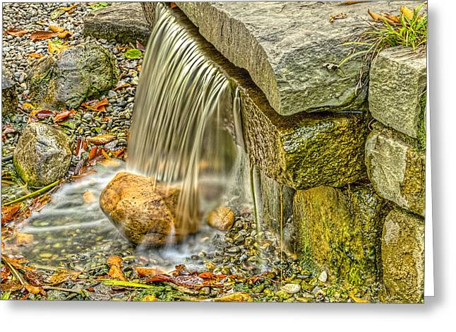 Shudder Greeting Cards - Rutgers Unversity Gardens water falloff Greeting Card by Geraldine Scull