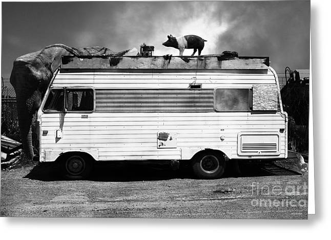 Rv Trailer Park 5d22705 Black And White V2 Greeting Card by Wingsdomain Art and Photography