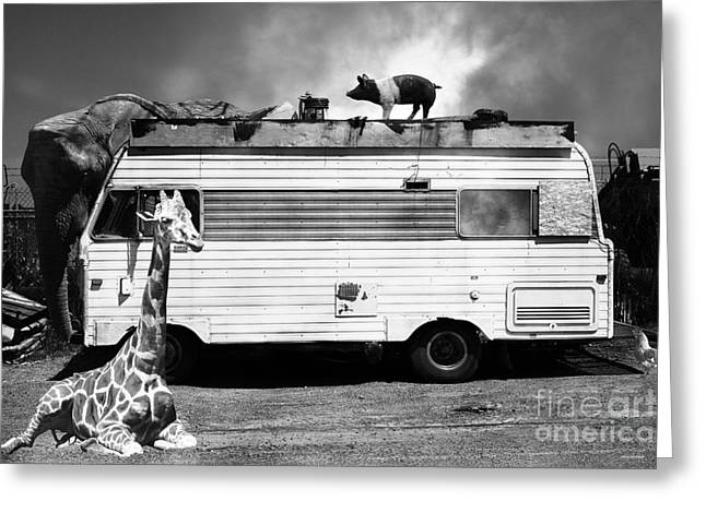 Rv Trailer Park 5d22705 Black And White Greeting Card by Wingsdomain Art and Photography