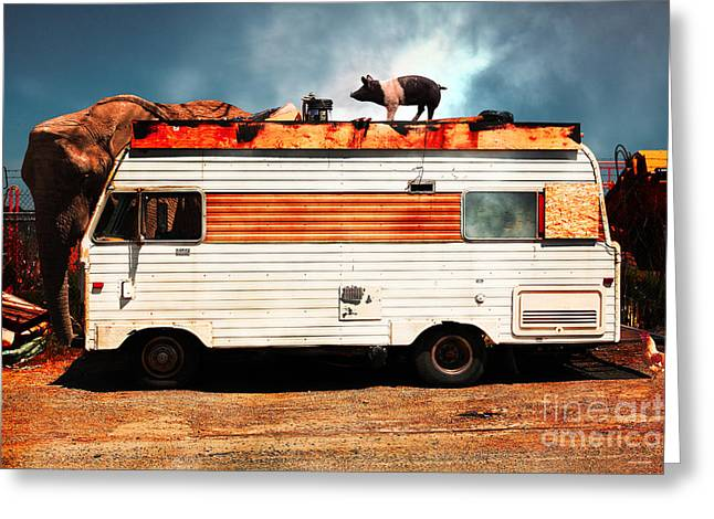 Trailer Trash Greeting Cards - RV Trailer Park 5D22705 v2 Greeting Card by Wingsdomain Art and Photography