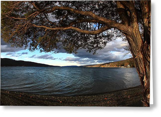 Keuka Greeting Cards - Rye Cove Greeting Card by Bob Magee