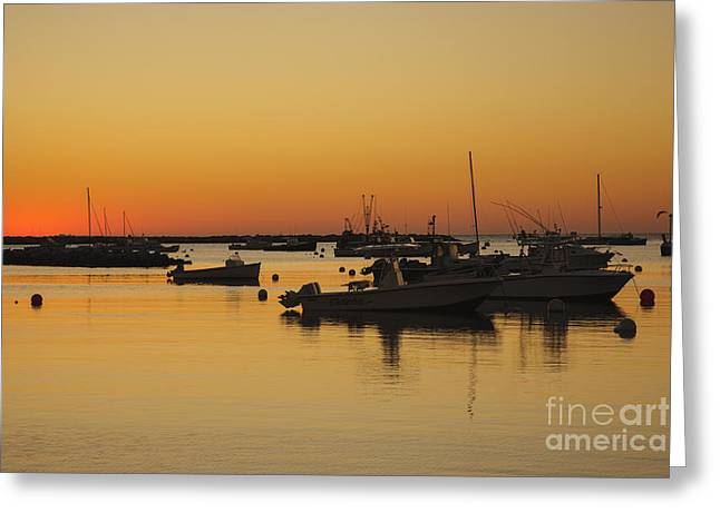 Park Scene Greeting Cards - Rye Harbor - Rye Harbor New Hampshire Greeting Card by Erin Paul Donovan
