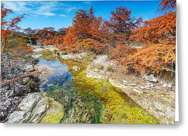Crisp Greeting Cards - Sabinal River Magic Utopia Texas Hill Country Greeting Card by Silvio Ligutti