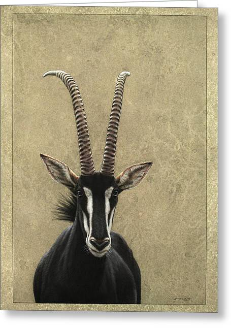 Animals Drawings Greeting Cards - Sable Greeting Card by James W Johnson