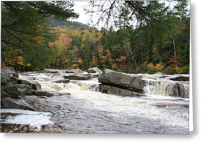 Saco River Greeting Cards - Saco River Rapids North Conway i Greeting Card by Christiane Schulze Art And Photography