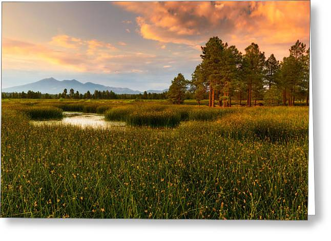 Kachina Greeting Cards - Sacred Arizona Sunset Greeting Card by Adam  Schallau