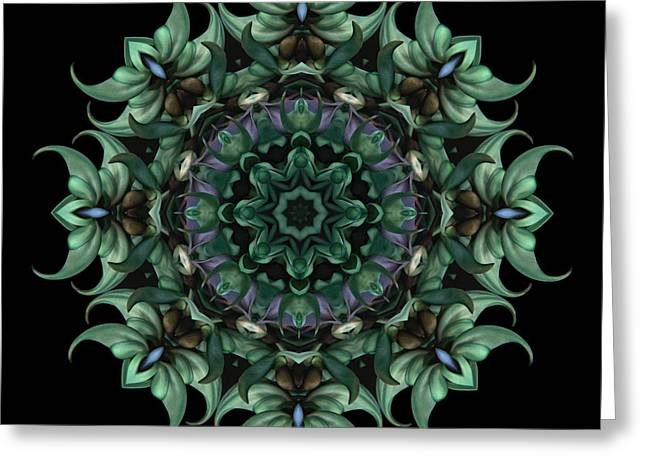 Jade Vine Greeting Cards - Sacred Aspects - Divine Masculine Greeting Card by Karen Casey-Smith