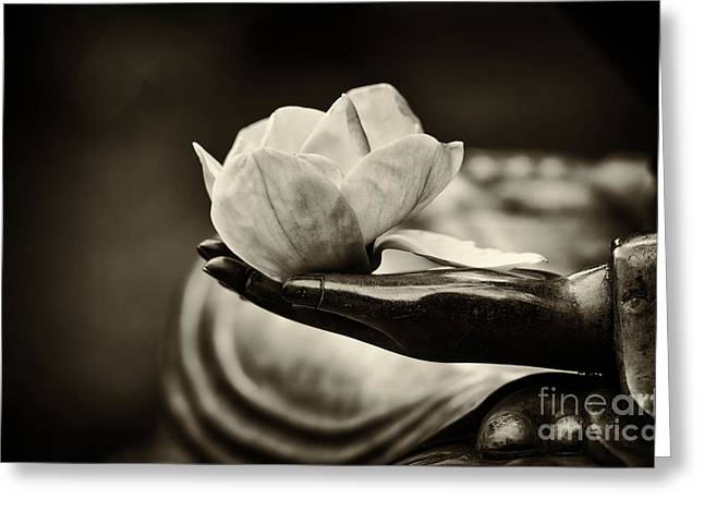 Enlightening Greeting Cards - Sacred Hand  Greeting Card by Tim Gainey
