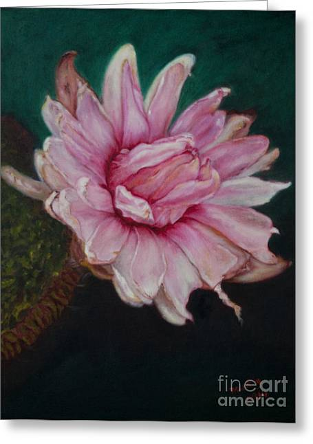 Salmon Paintings Greeting Cards - Sacred red Lotus Greeting Card by Mukta Gupta