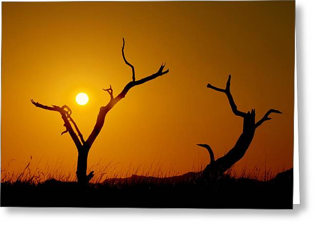 Grasslands Greeting Cards - Sacrifice Greeting Card by Chad Dutson