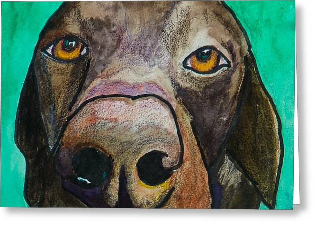 Chocolate Lab Greeting Cards - Sad Eyes Greeting Card by Roger Wedegis