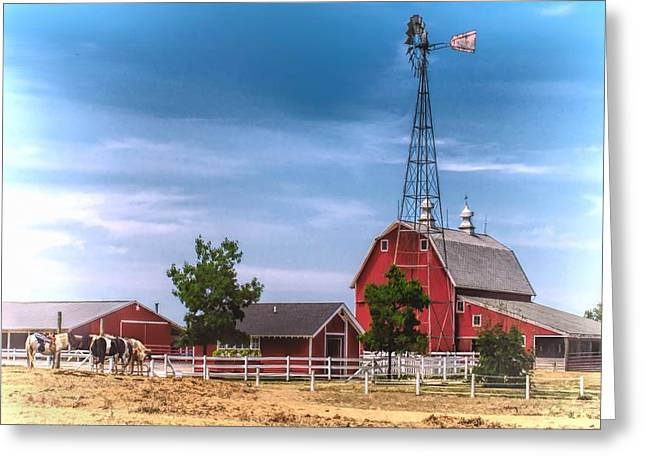 Weathervane Greeting Cards - Saddle Up Greeting Card by Pat Cook
