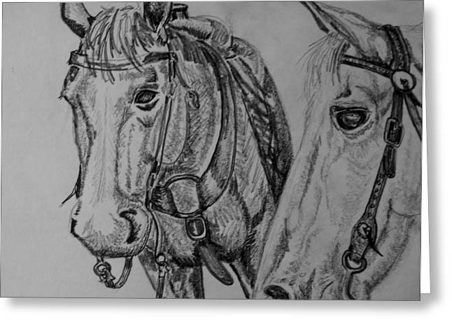 Collar Drawings Greeting Cards - Saddled and resting Greeting Card by Joan Mace
