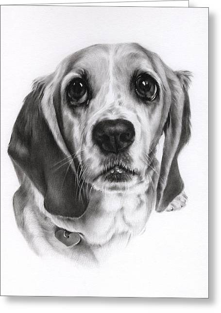 Puppies Drawings Greeting Cards - Sadie Greeting Card by Natasha Denger