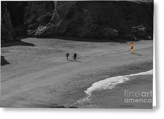 Cornish Beaches Greeting Cards - Safe Flag Greeting Card by Brian Roscorla