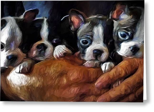 Love The Animal Greeting Cards - Safe In The Arms Of Love - Puppy Art Greeting Card by Jordan Blackstone