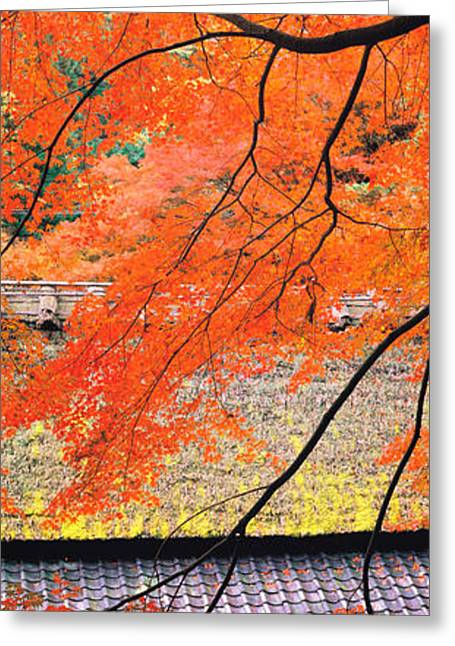 """roof Tile"" Greeting Cards - Sagano Kyoto Japan Greeting Card by Panoramic Images"